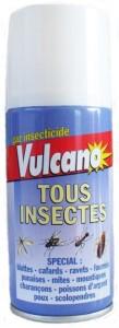 VULCANO TOUS INSECTES