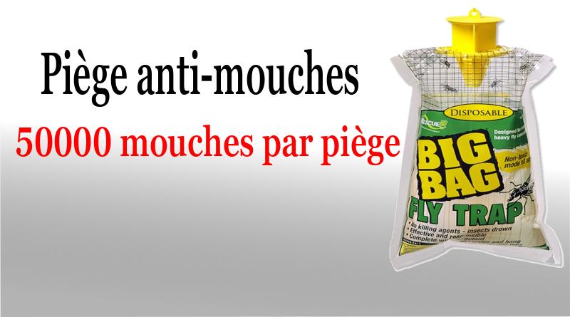 Piège anti-mouches écologique